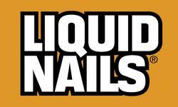 Logotip_LiquidNails