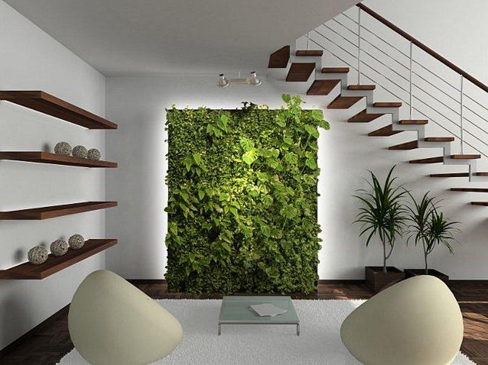 Rasteniya_v_minimalisticheskom_interiore